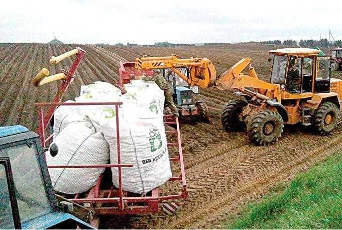 Завантаження картоплі