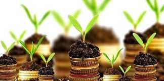 Кредитування аграріїв Alfa Smart Agro