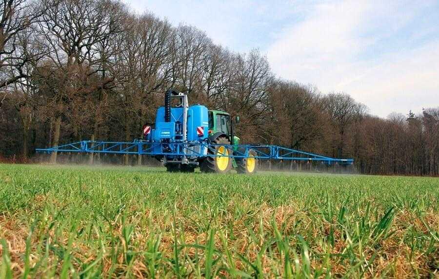 Осіннє внесення гербіцидів на пшениці