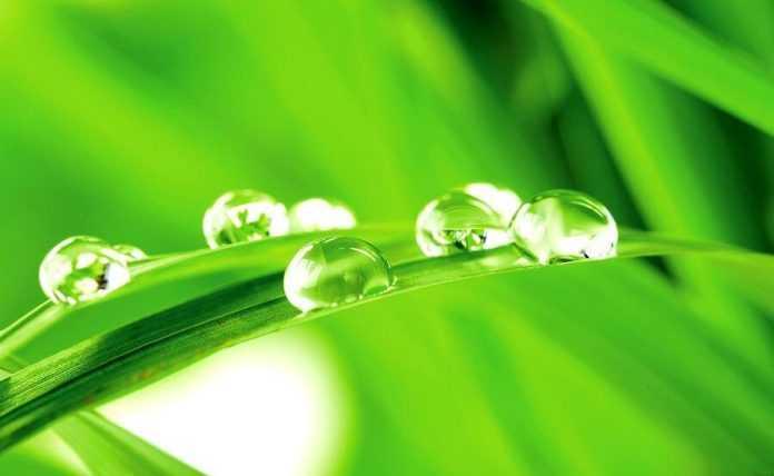 Три свойства фосфитов