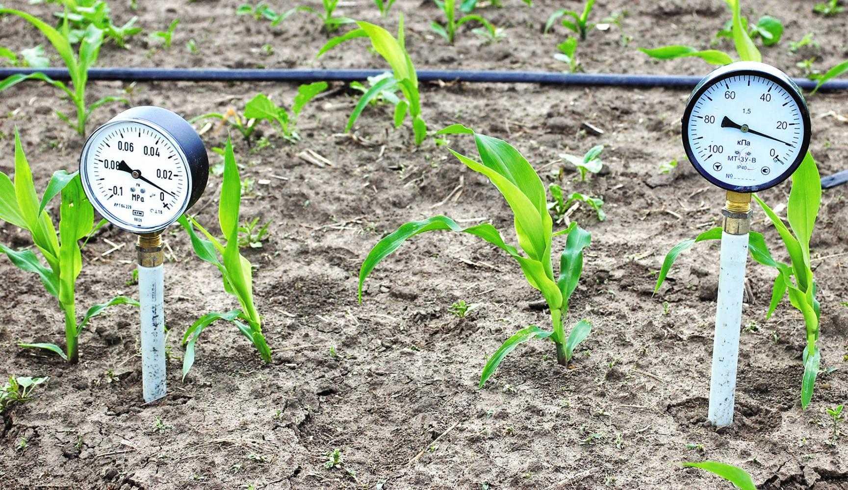 Тензіометричні датчики вологості ґрунту типу ВВТ-ІІ на дослідному полігоні (Херсонська область)