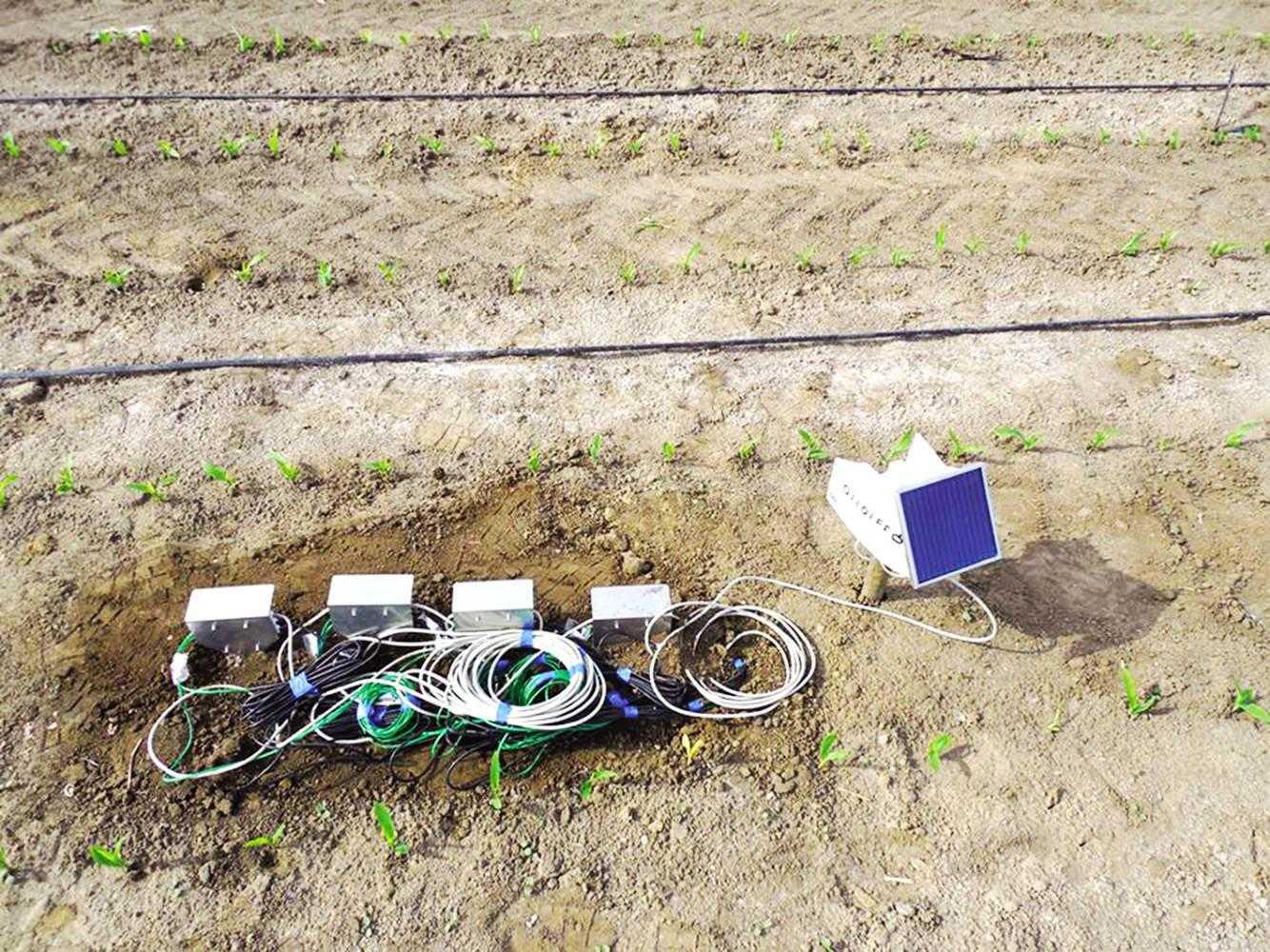 Інтернет-станція вологості ґрунту