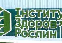 Інститут здоров'я рослин