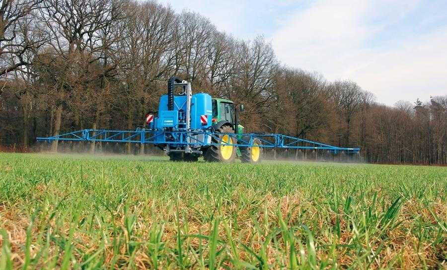 Захист пшениці