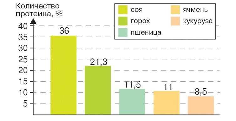 Количество протеина в семенах различных культур