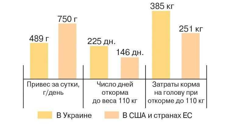 Рис. 3. Эффективность откорма свиней в США и странах ЕС по сравнению с эффективностью откорма в Украине