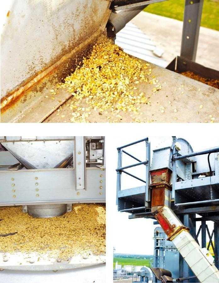 Рис. 4. При перевалке семян сои сильно стирается технологическое и транспортное оборудование (сильнее, чем при перевалке всех других культур). Поэтому нужно использовать специальные полимерные вставки внутри транспортных труб