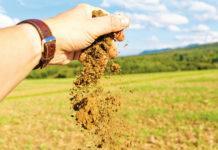 Роль органического вещества почвы в получении высоких урожаев