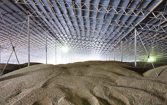 Как организовать зернохранилище для длительного хранения зерна