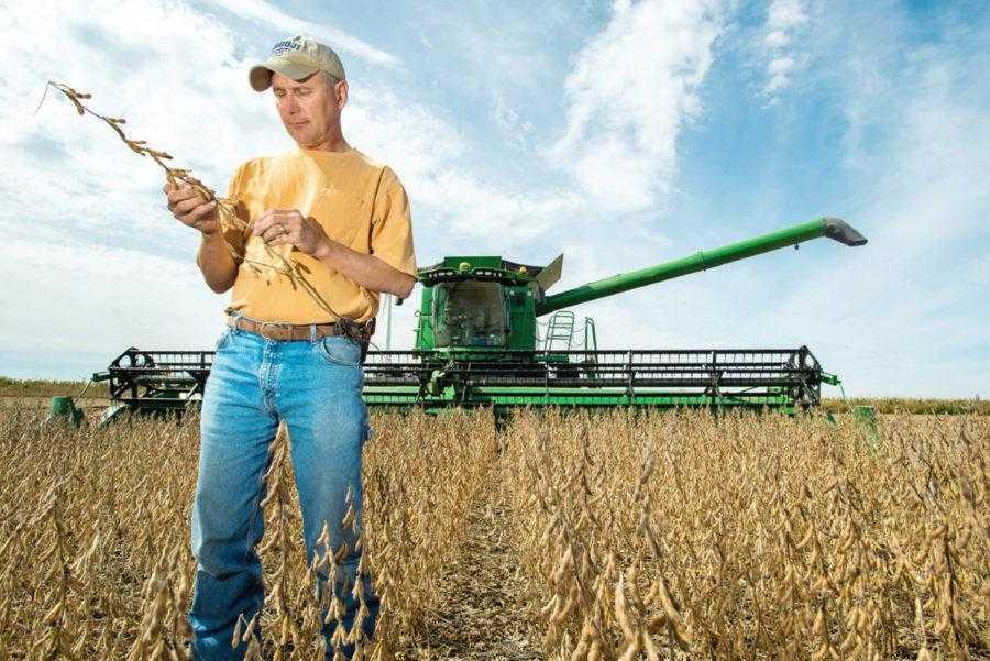 Эффективность удобрений, а особенно рентабельность их внесения, следует рассчитывать не на одну культуру, а учитывать всю систему земледелия