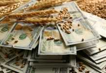 пшениця гроші