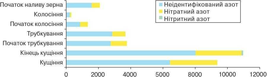 Рис. 2. Склад небілкового азоту зеленої маси злакових культур у різні фази розвитку, мг/кг