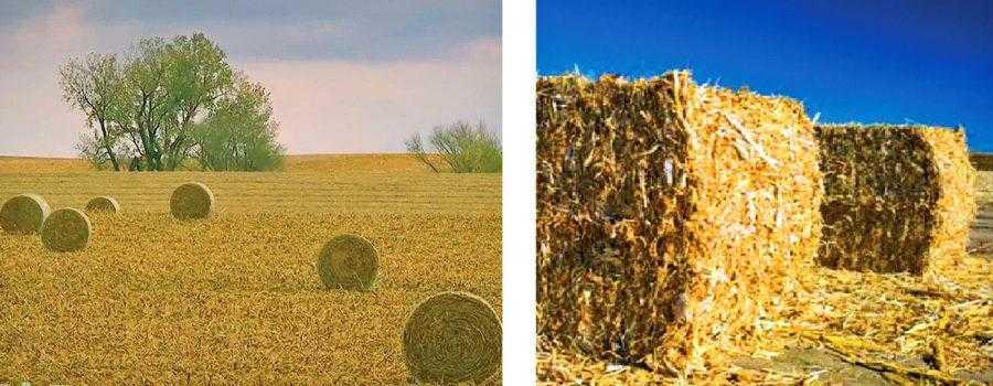 Рис. 3. Наиболее распространенный способ уборки кукурузной соломы – в круглые тюки (на фото слева). Но для транспортировки соломы и ее хранения это не самый лучший вариант. Более компактными считаются квадратные тюки (на фото справа)