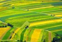 Страхування посівів